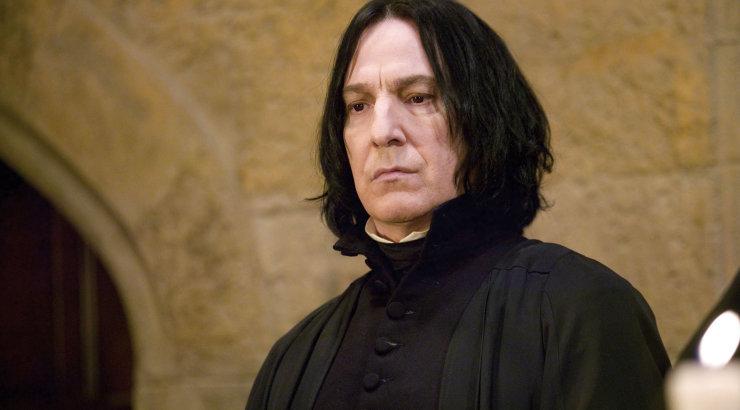 Anna ennast üles! Perekond soovib palgata päris professor Severus Snape'i