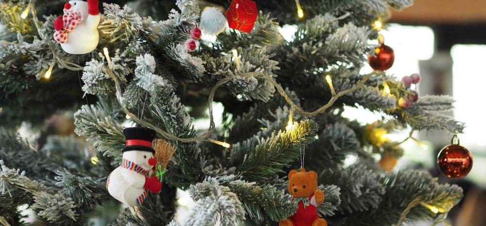 СОВЕТЫ │ 8 ценных рекомендаций, как продлить жизнь новогодней елке