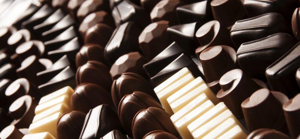Koerale šokolaadi andmine võib lõppeda surmaga: mida teha, kui koer sõi šokolaadi?