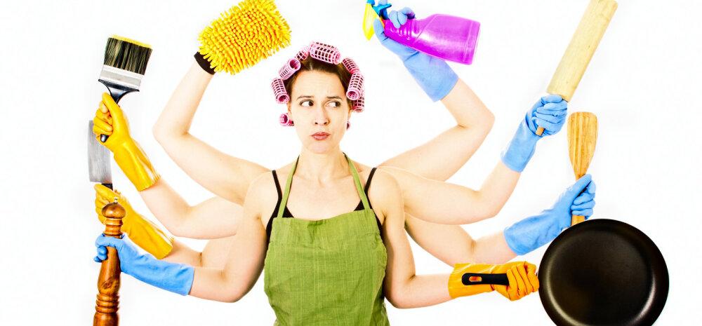 Ela lihtsamalt| Kuidas koristada kogu elamine ära nii, et tulemus saaks põhjalik, kuid kulgeks kiirelt ning liigse stressita