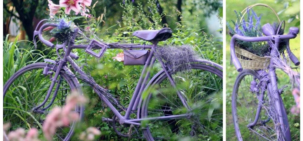 """ДЕЛАЕМ САМИ │ Старый велосипед """"Спутник"""" как украшение вашего сада"""