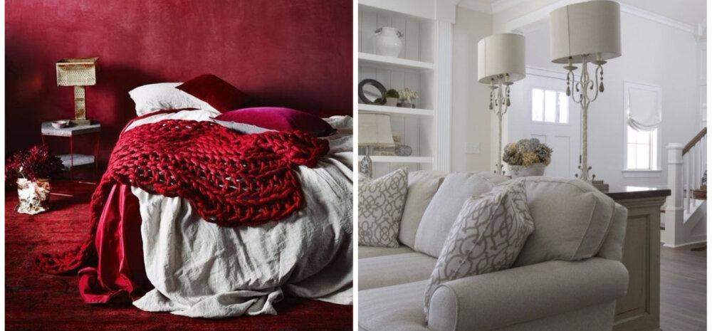 TOP 10 LEMMIKLOOD | Sisustusideid talveks, luksusbussi kodune interjöör ja kirglikud värvid magamistoas