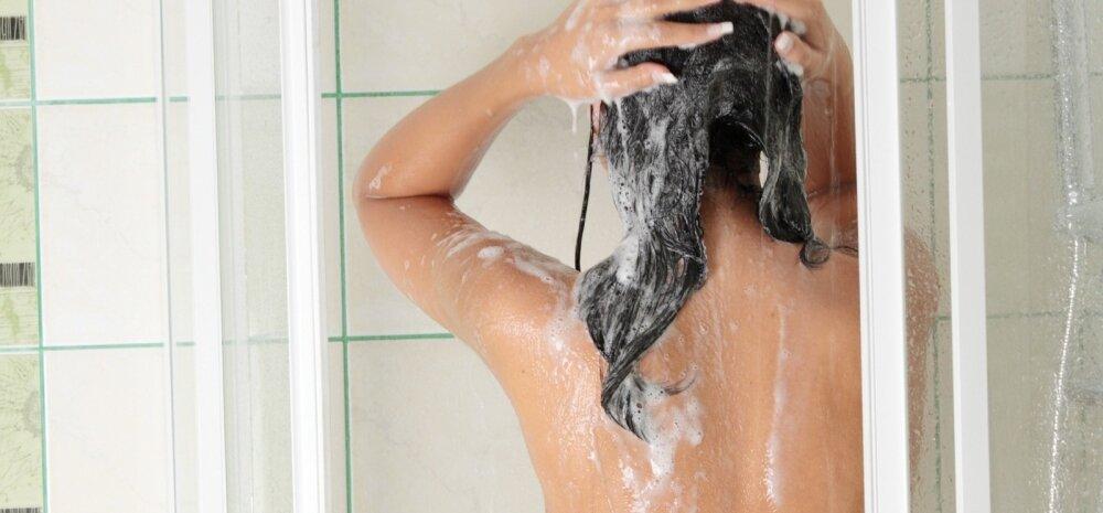 šampoon