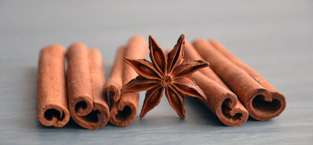 Kaneeli imelised ravitoimed: 10 põhjust selle aromaatse vürtsi armastamiseks