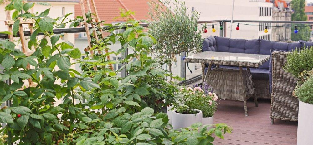 Rõdu, lodža või terrass tõstab kinnisvara turuväärtust