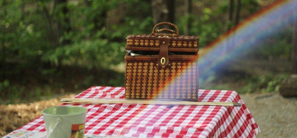RETSEPTISOOVITUS: Tervislik piknikukorv