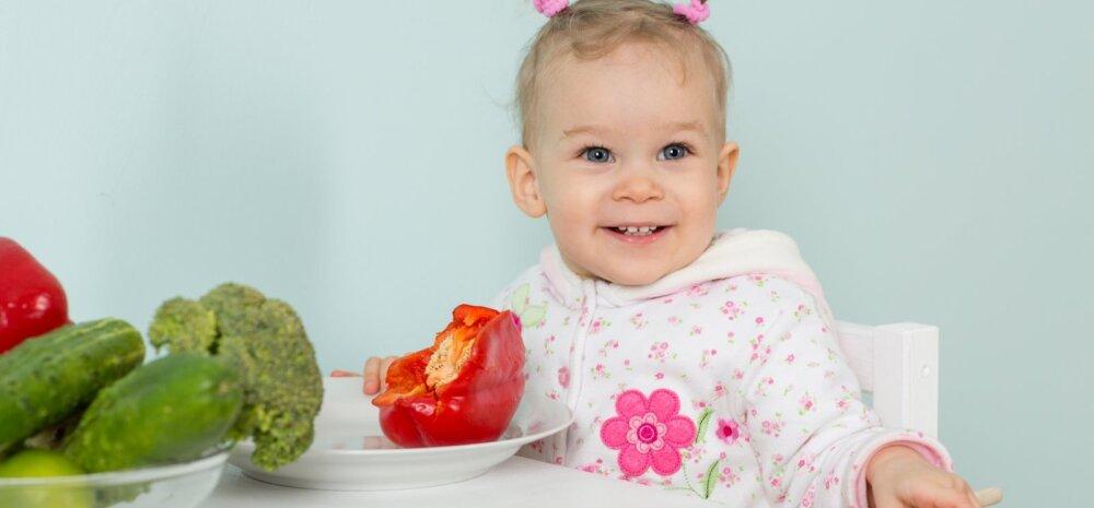15 väikest ja nutikat toidunippi mudilaste vanematele