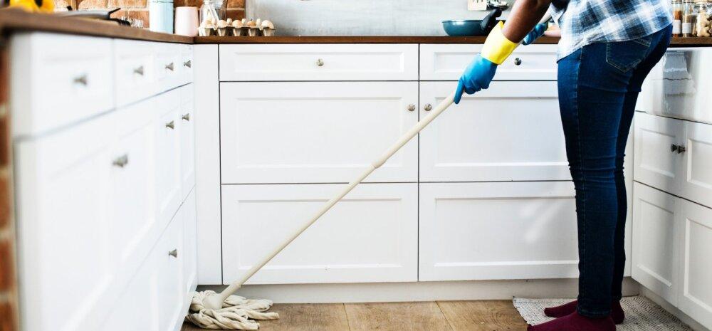 Koduabiline — võtta või mitte?