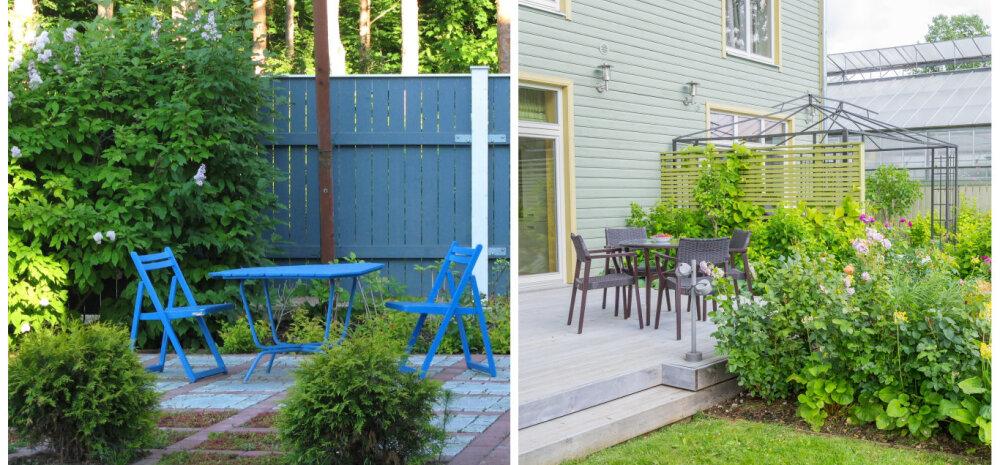 Hoidu aia-apsakatest: kogemusi jagavad maastikuarhitekt, aiadisainer ja hobiaednik