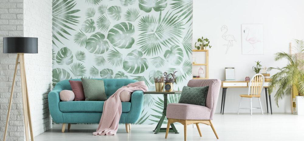 DEKOR.EE: тренды дизайна интерьера, практичные советы для дома и сада — каждый найдет для себя полезную информацию!