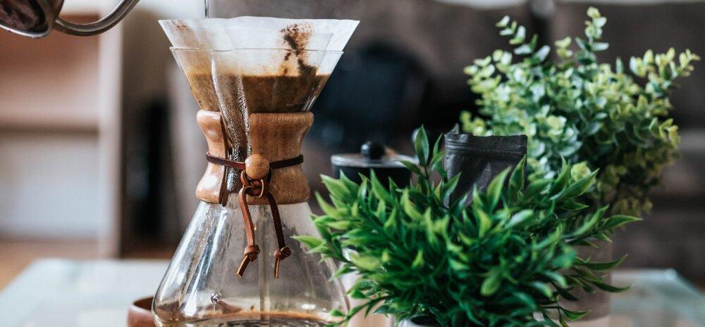 Дом без запахов: необычное применение кофейных фильтров в быту