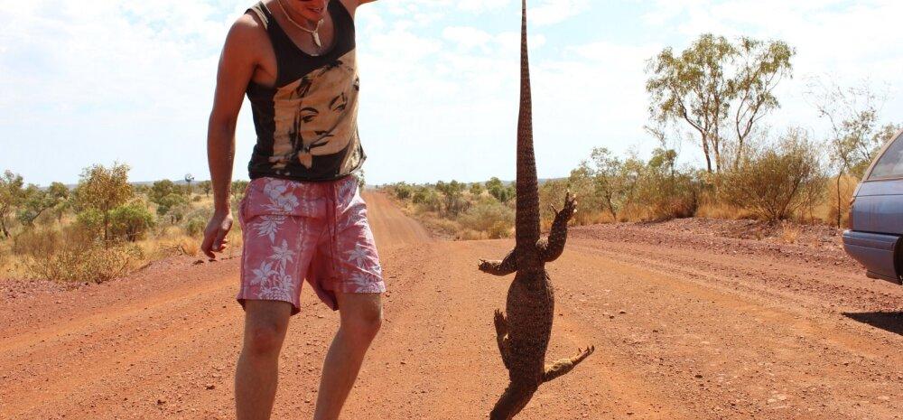 Eestlane Austraalias: põletava päikese käes põõsastelt koore mahakraapimine polnud päris see, mida alguses ette kujutasime