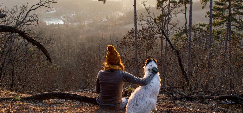 Uudne ja huvitav ÜRITUS | Tallinna Ülikooli suvekool pakub esmakordselt võimalust õppida koerte käitumist