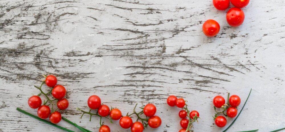 Söö tomatit ja ole terve! Hõrgul punasel viljal on hulk kasulikke omadusi, mida sa siiani ei teadnudki!