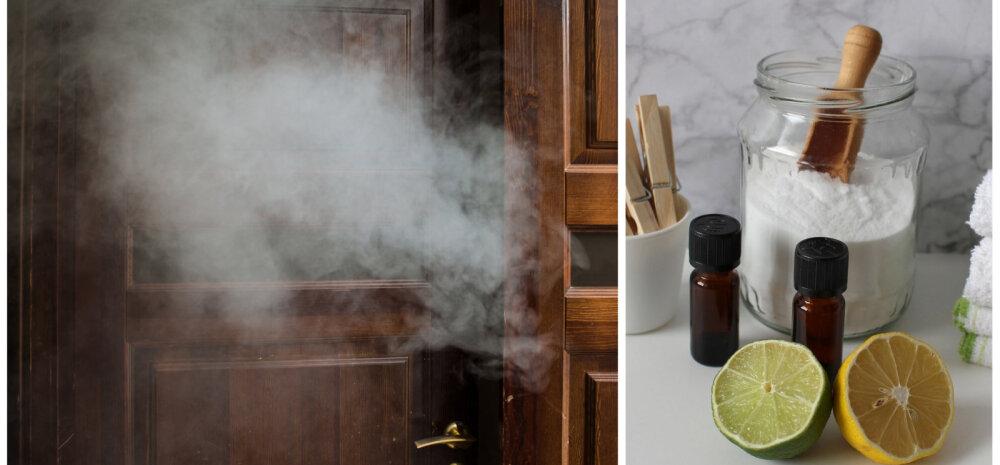 НА ЗАМЕТКУ │ Как быстро избавиться от запаха табака в квартире