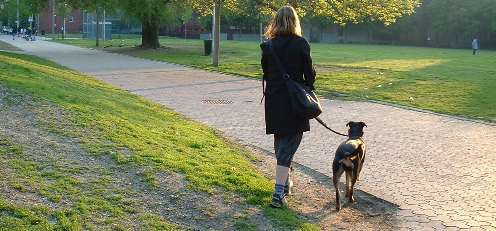 Sten nendib fakti: kaunite naiste päralt on mehed, keskpärased naised võtavad koera!