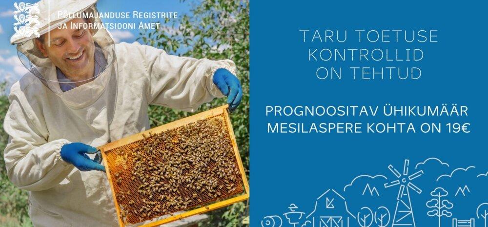 Tänavu esimest korda makstavat mesilaspere toetust taotles 1385 mesinikku
