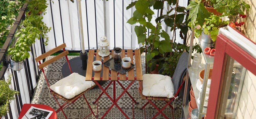 ФОТО   Используйте время на карантине целесообразно. Как обустроить балкон без затрат времени и средств