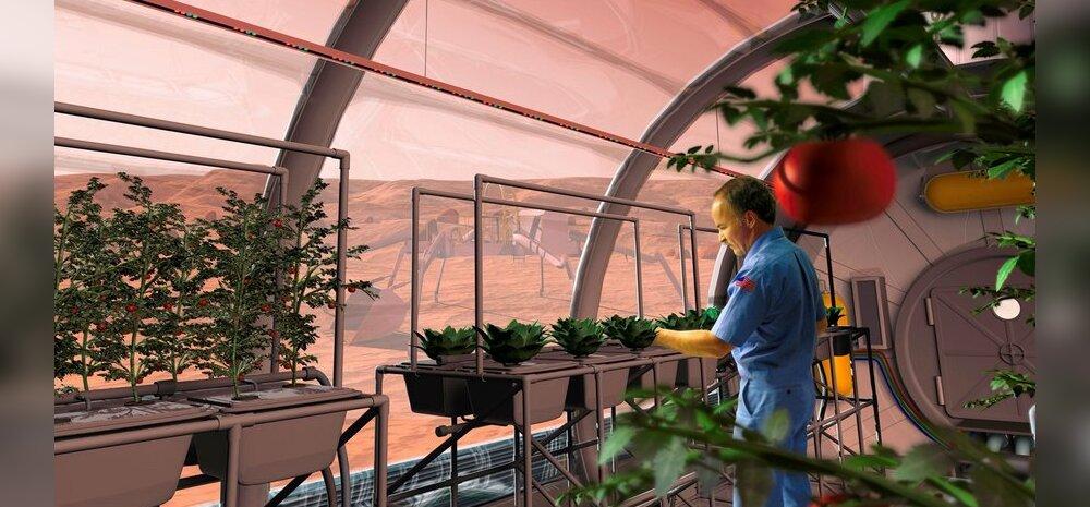 Teaduslik selgitus: Kas Marsil saab taimi kasvatada?