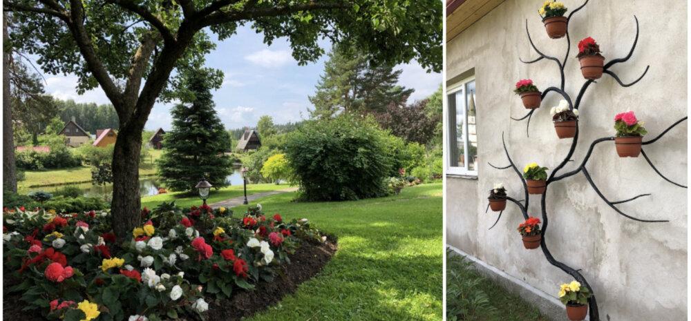 ФОТО │ Лучшие из лучших: в Латвии выбрали самые красивые сады домов и квартир