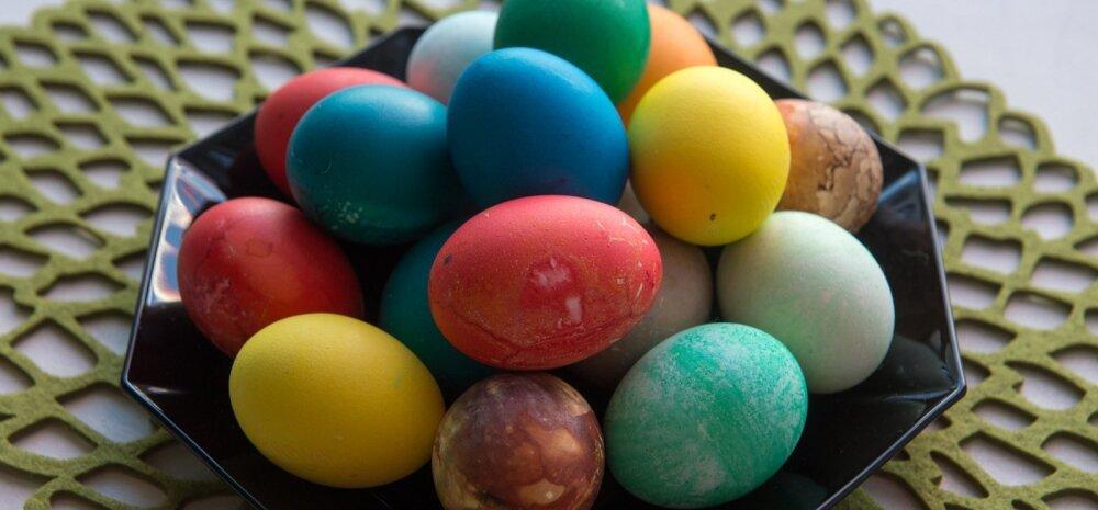 SUUR LIHAVÕTTESPIKKER   kõige vajalikumad nipid munade keetmiseks, 100 erinevat võimalust munade värvimiseks ja parimad munaretseptid