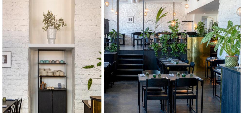 Inspireeriva sisekujundusega restoran, mille interjöörist leiab ideid ka koju