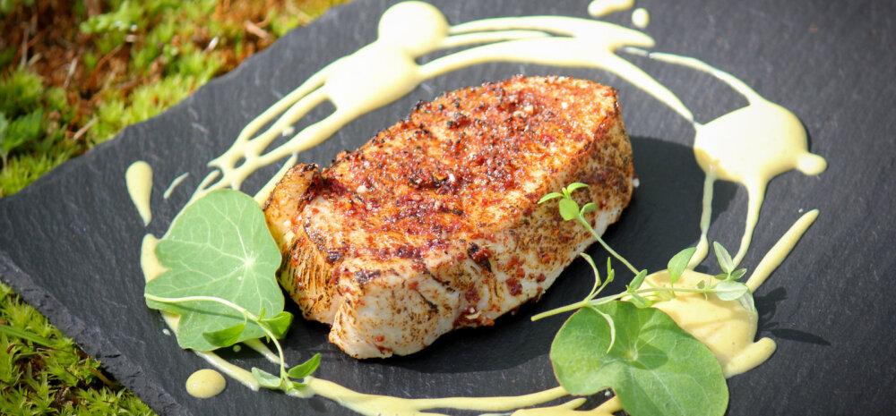 Idee nädalavahetuseks: korralda üks hõrgutavaid maitseid täis suvelõpu grillipidu