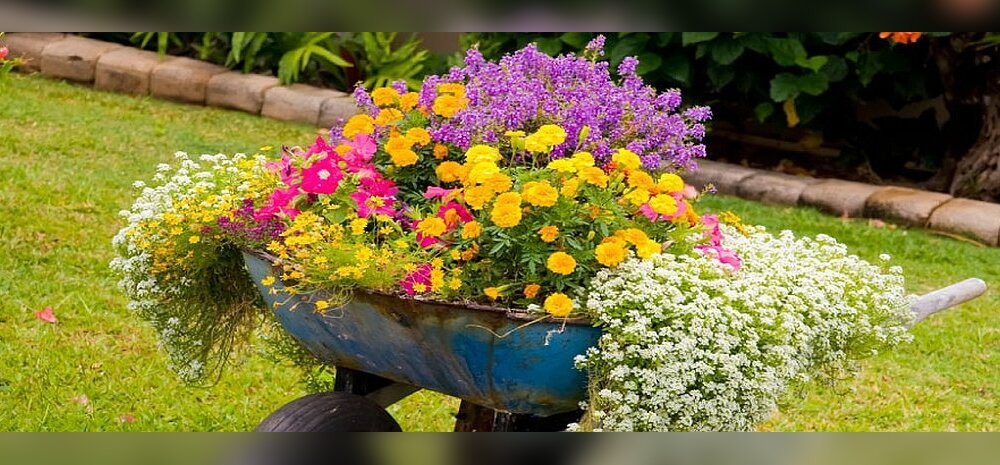Juuni aiatööde meelespea!