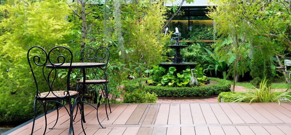 Aiapidaja <em>feng shui</em> — nippe, kuidas õige aiakujunduse abil meelitada koju rikkus, tervis ja hea energia