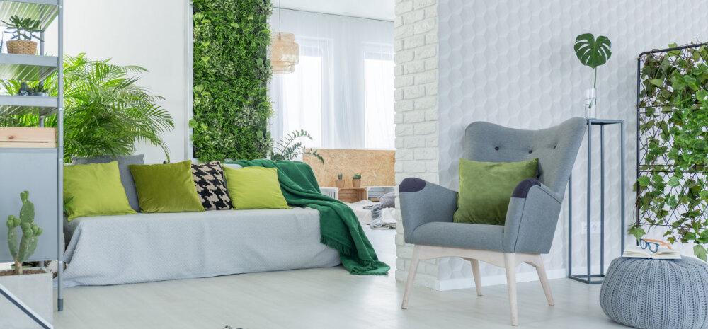 FOTOD | Talvel too interjööri tuju tõstvat rohelist!