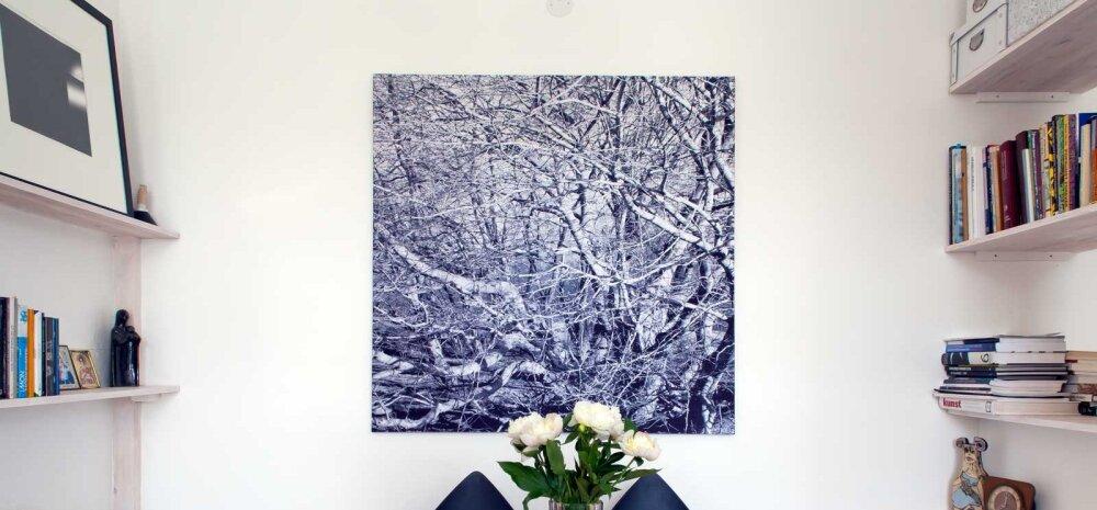 Kunst koju seina! Arhitektuurifotograaf Arne Maasik kutsub lahtiste uste päevale