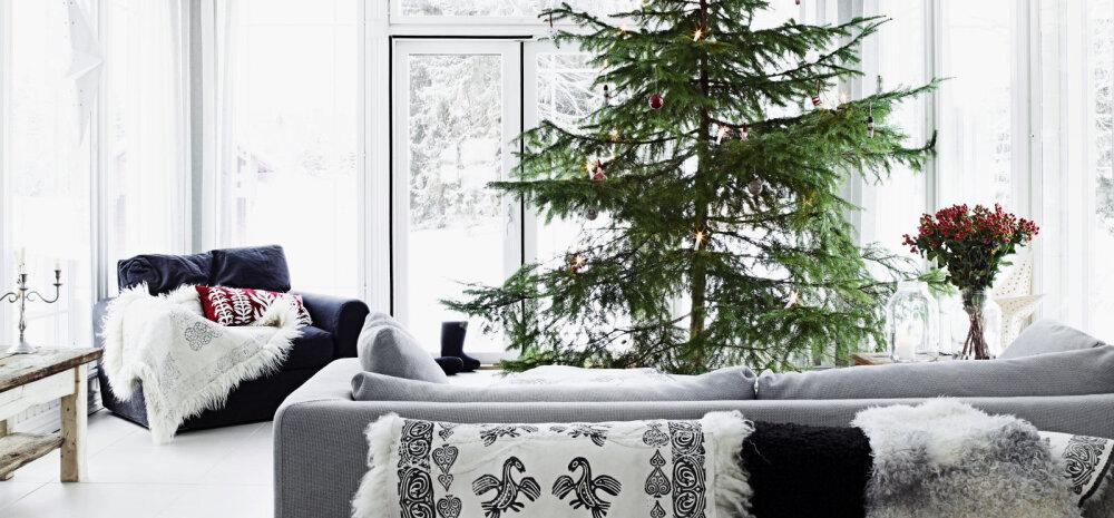 Eestlane Soomes — heidame pilgu põhjanaabrite jõulukodudesse