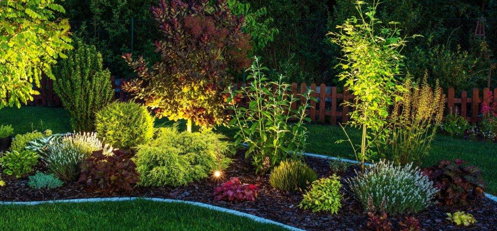 Et ka õueruum oleks hubane — nipid aia valgustamiseks