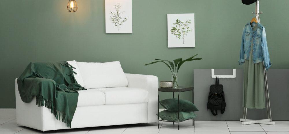 Nippe seinte värvimiseks — milline tehnika valida ja kuidas leida sobiv värv?