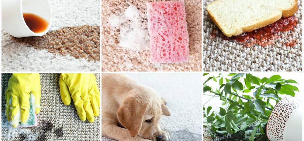 НА ЗАМЕТКУ   Волшебные способы применения соды в быту
