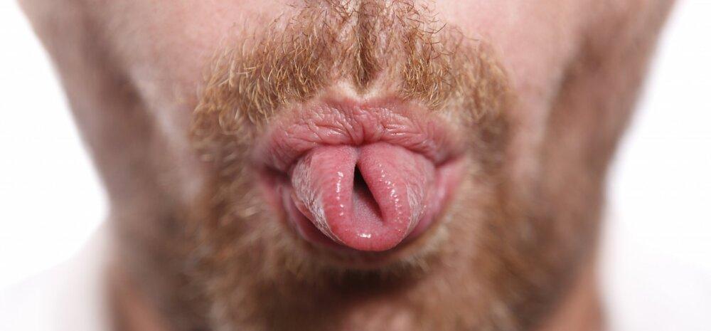 Meestele: 15 asja, mida su naine soovib, et sa suuseksi kohta teaksid