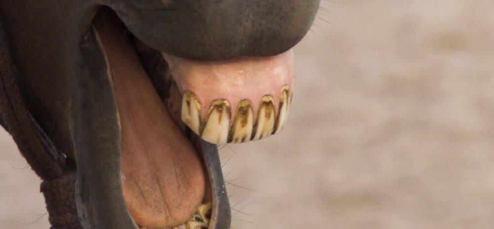 Seitse ootamatut asja, mis teevad su hambad kollaseks