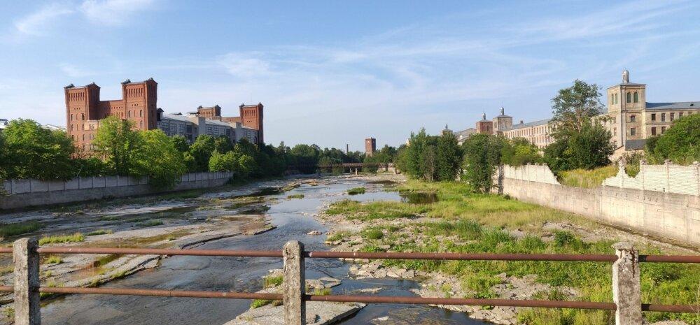 Kremli ööbikud, Narva