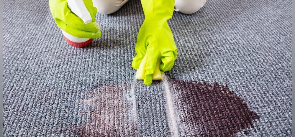 НА ЗАМЕТКУ | Как удалить самые трудновыводимые пятна на ковре