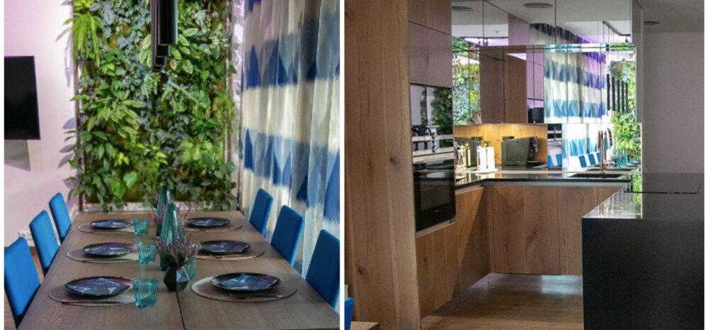 """""""НАШ ДОМ 2018"""" │ Кухня с зеркалами и вертикальным озеленением"""