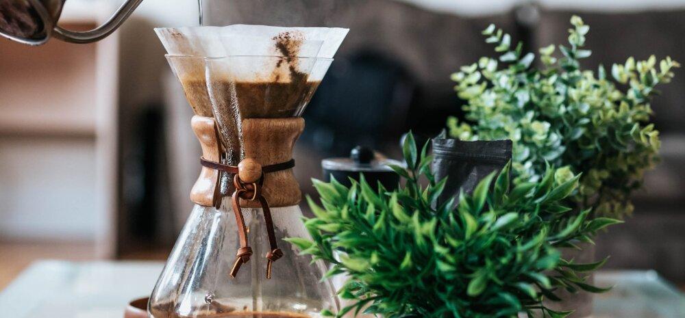 HEA NÕU | Taimedki ihaldavad kohvi