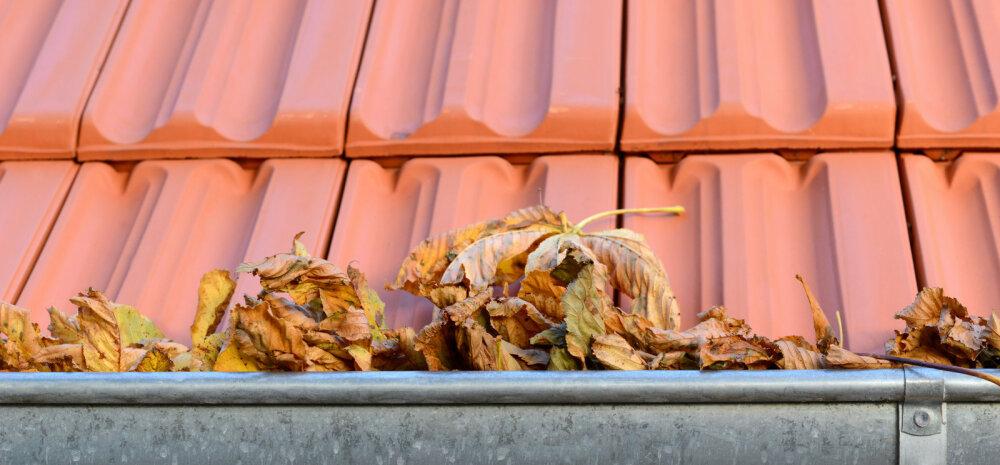 Katuse sügisene hooldus — millised tööd tuleks kindlasti ette võtta?
