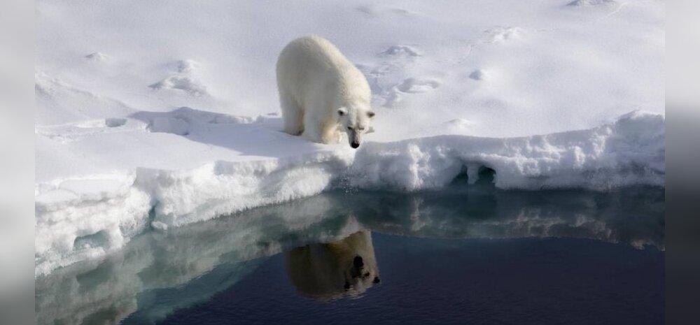 Arktika merejää hoiab tallel miljardeid plastitükikesi
