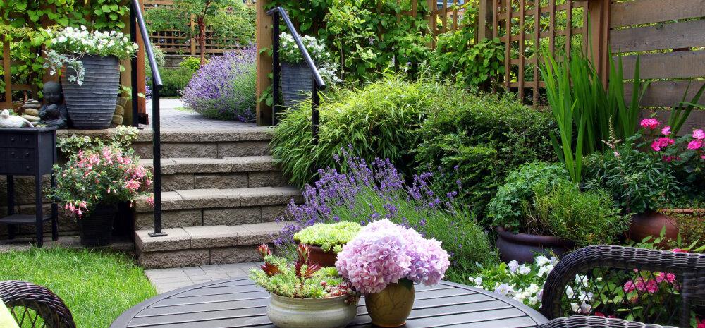 Üheksa nippi, kuidas kujundada mõnus aianurgake