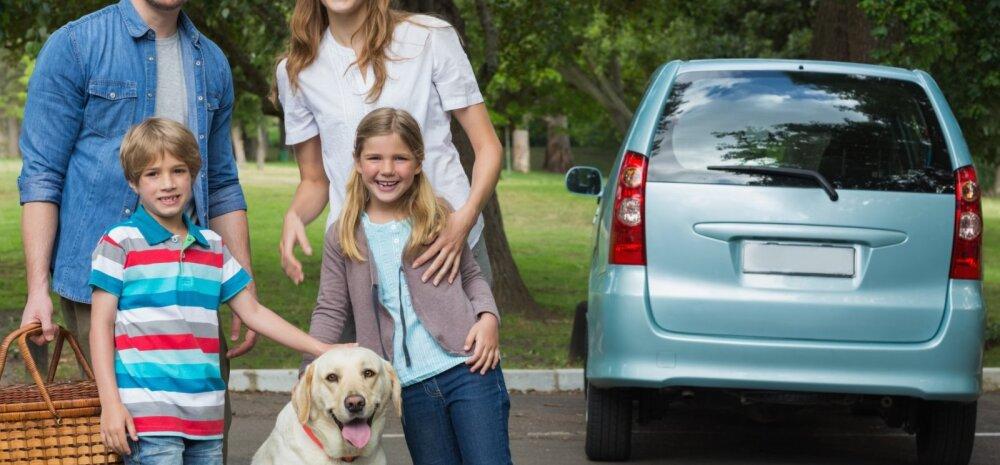 Plaanid lemmiklooma reisile kaasa võtta? Nipid, kuidas autosõit tema jaoks võimalikult ohutuks muuta