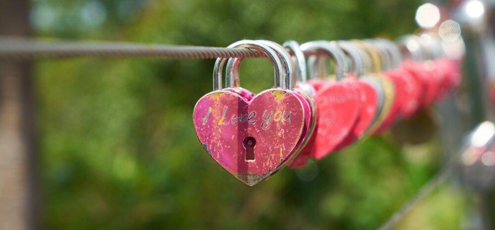 Seitse asja, mille pead põhjalikult läbi kaaluma enne, kui abikaasa armukese vastu välja vahetad