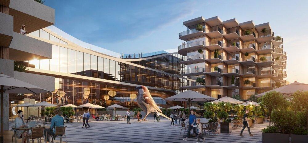 Чтобы потом говорить предметно: жителей приглашают посмотреть на архитектурное решение Центрального рынка