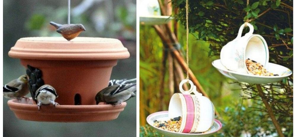 TEE ISE | Tõeliselt inspireerivad söögimajad lindudele