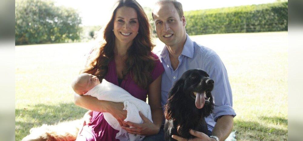 Cambridge'i hertsog ja hertsoginna poja ja koeraga