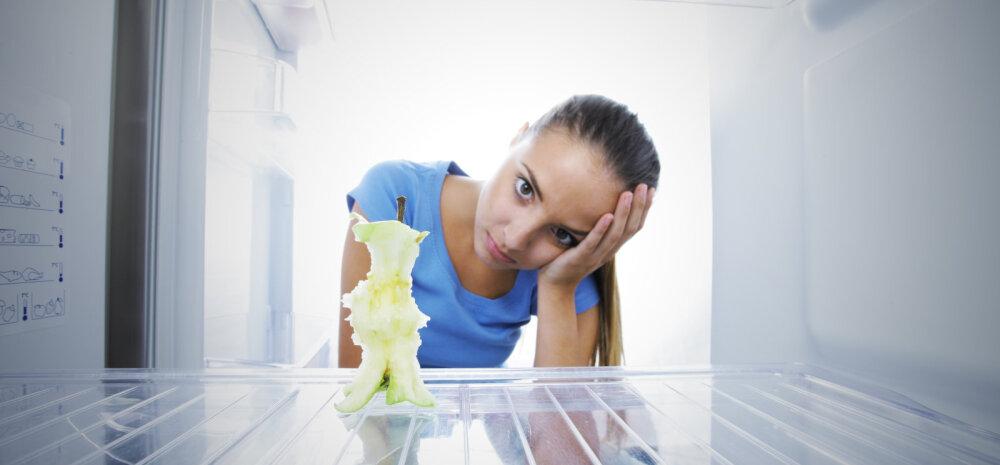 Kuu lõpp on käes: mida teha, kui kõht on tühi, aga külmkapis haigutab tühjus?